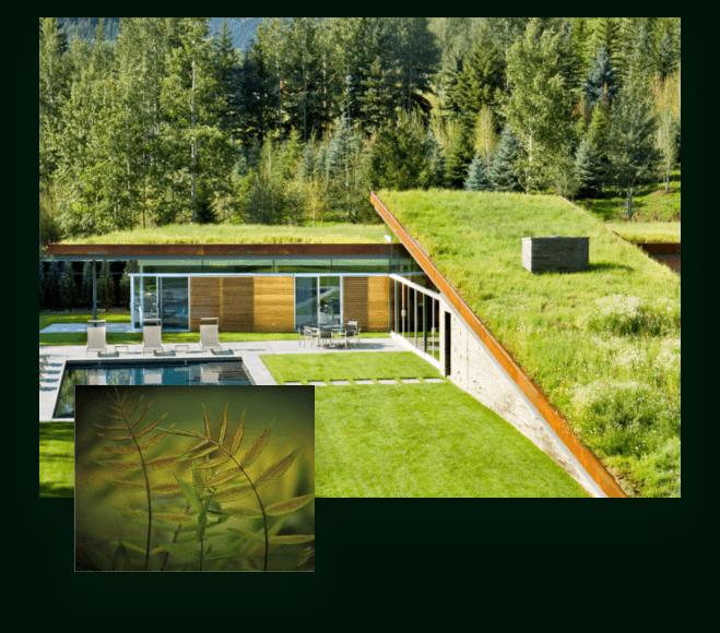 Výhody zelených staveb a pasivních domů